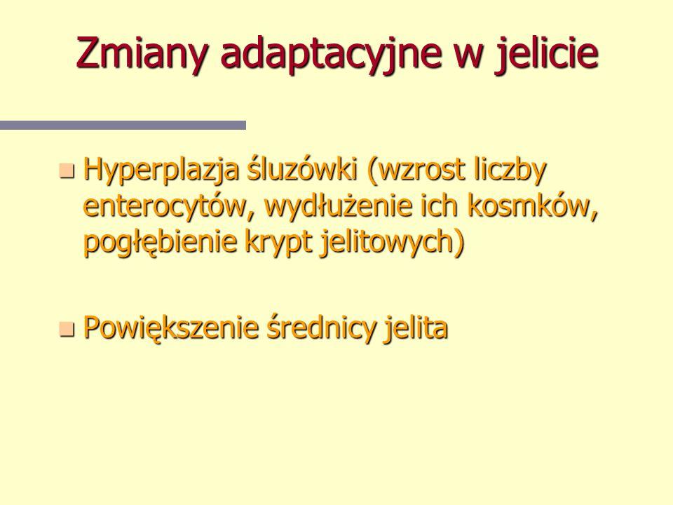 Zmiany adaptacyjne w jelicie Hyperplazja śluzówki (wzrost liczby enterocytów, wydłużenie ich kosmków, pogłębienie krypt jelitowych) Hyperplazja śluzów