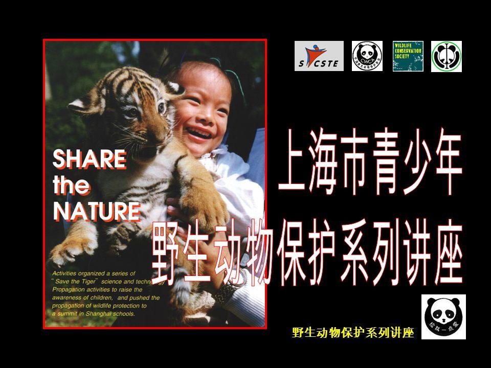 野生动物保护系列讲座 我国政府对普氏野马的拯救和保护工作 ● 1988 年 11 月 8 日,为了保护、拯救珍贵、濒危野生动物, 保护、发展和合理利用野生动物资源,维护生态平衡,全 国人民代表大会通过《中华人民共和国野生动物保护法》。 ● 1988 年 12 月,国务院批准颁布了《国家一、二级重点 保护野生动物名录》。 普氏野马列入国家一级保护动物种类名录 。 普氏野马保护