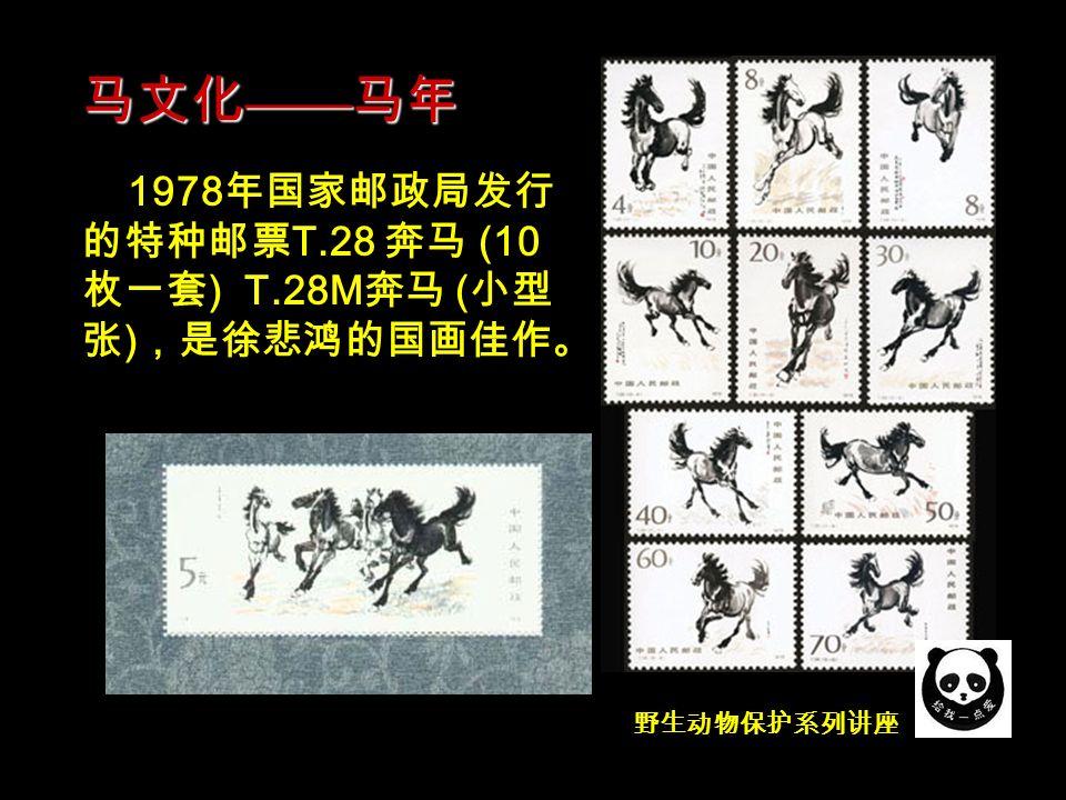 野生动物保护系列讲座 中国历代文物中表现马的作品 层出不穷,最典型的是反映皇帝 御驾的清代 乾隆南巡图 和显示 民族精神的东汉 青铜马踏飞燕 。 马文化 —— 马年