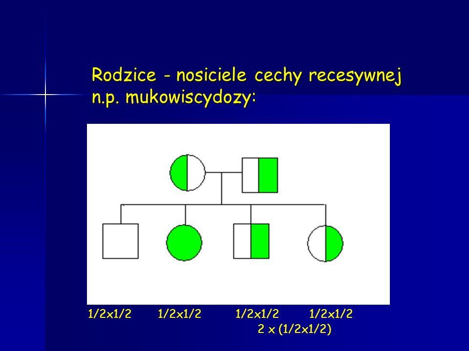 Rodzice - nosiciele cechy recesywnej: ryzyko urodzenia chorego dziecka 1/2x1/2=1/4 szansa urodzenia zdrowego dziecka (1/2x1/2) zdrowa homozygota + 2x (1/2x1/2) heterozygota = 3/4 (suma dwóch wzajemnie wykluczających się zjawisk)