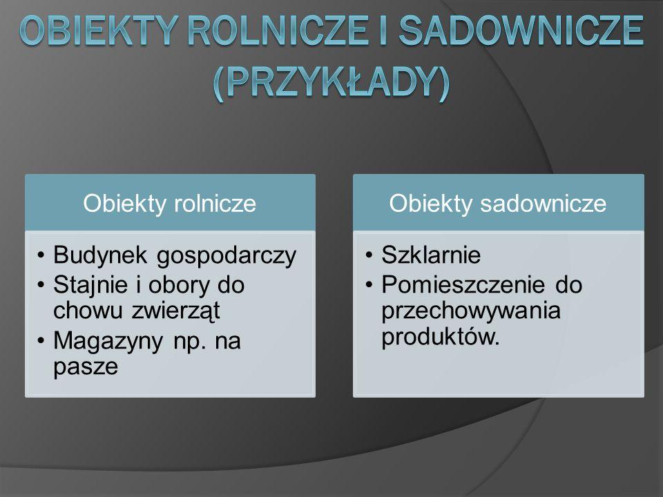 Marek Szelepusta kl. III D Technikum Elektryczne w Łęcznej