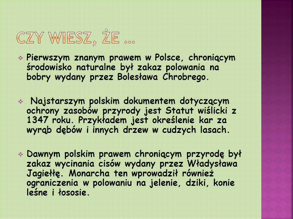  Pierwszym znanym prawem w Polsce, chroniącym środowisko naturalne był zakaz polowania na bobry wydany przez Bolesława Chrobrego.