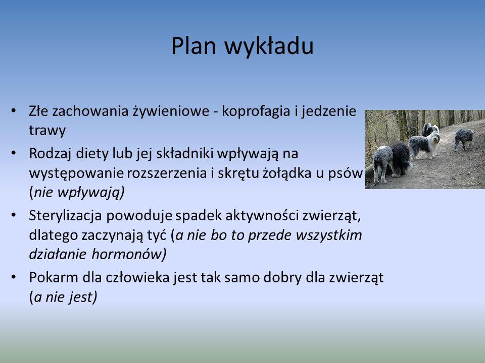 Plan wykładu Złe zachowania żywieniowe - koprofagia i jedzenie trawy Rodzaj diety lub jej składniki wpływają na występowanie rozszerzenia i skrętu żołądka u psów (nie wpływają) Sterylizacja powoduje spadek aktywności zwierząt, dlatego zaczynają tyć (a nie bo to przede wszystkim działanie hormonów) Pokarm dla człowieka jest tak samo dobry dla zwierząt (a nie jest)