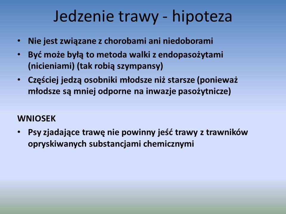 Jedzenie trawy - hipoteza Nie jest związane z chorobami ani niedoborami Być może byłą to metoda walki z endopasożytami (nicieniami) (tak robią szympansy) Częściej jedzą osobniki młodsze niż starsze (ponieważ młodsze są mniej odporne na inwazje pasożytnicze) WNIOSEK Psy zjadające trawę nie powinny jeść trawy z trawników opryskiwanych substancjami chemicznymi