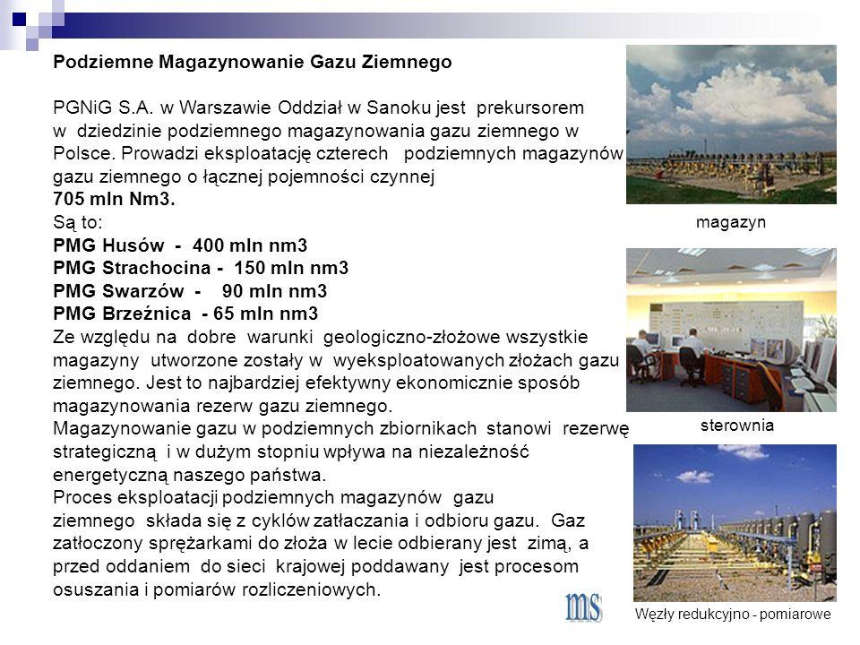 Podziemne Magazynowanie Gazu Ziemnego PGNiG S.A.