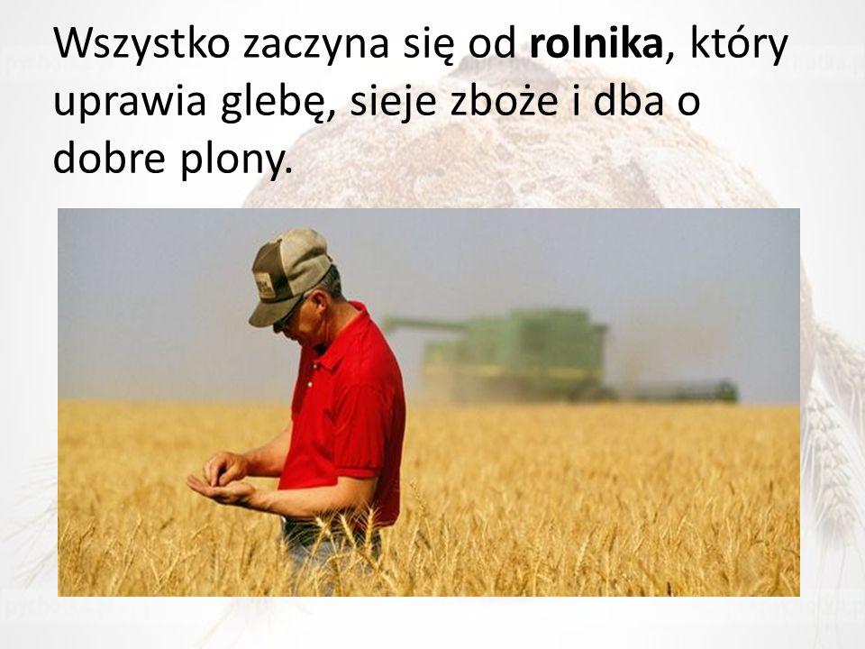 Wszystko zaczyna się od rolnika, który uprawia glebę, sieje zboże i dba o dobre plony.