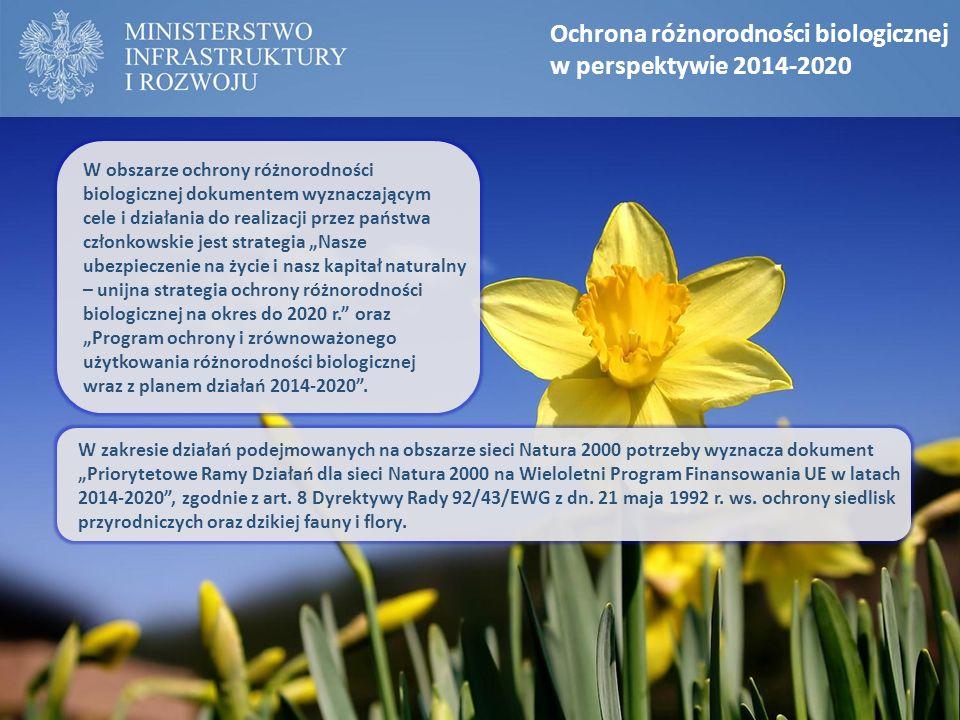 Ochrona różnorodności biologicznej w perspektywie 2014-2020 W obszarze ochrony różnorodności biologicznej dokumentem wyznaczającym cele i działania do
