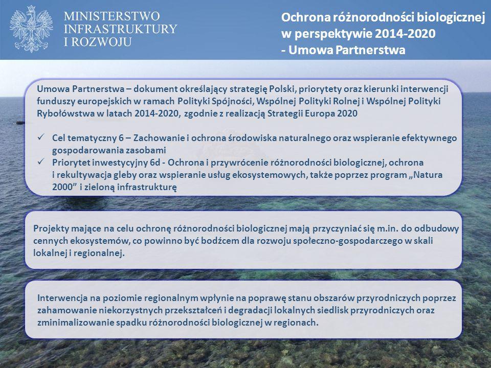 Ochrona różnorodności biologicznej w perspektywie 2014-2020 - Umowa Partnerstwa Umowa Partnerstwa – dokument określający strategię Polski, priorytety