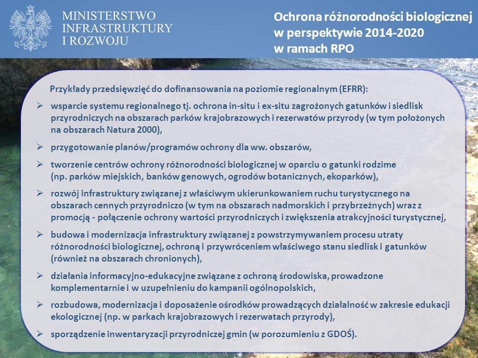 Ochrona różnorodności biologicznej w perspektywie 2014-2020 w ramach RPO Przykłady przedsięwzięć do dofinansowania na poziomie regionalnym (EFRR):  w