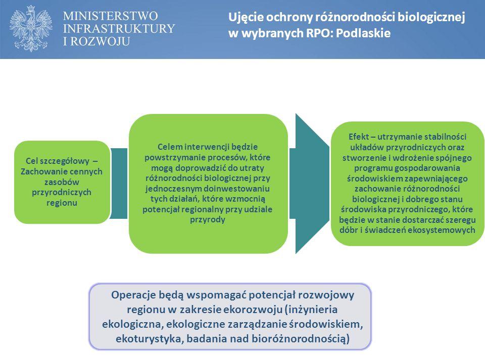 Ujęcie ochrony różnorodności biologicznej w wybranych RPO: Podlaskie Cel szczegółowy – Zachowanie cennych zasobów przyrodniczych regionu Celem interwe