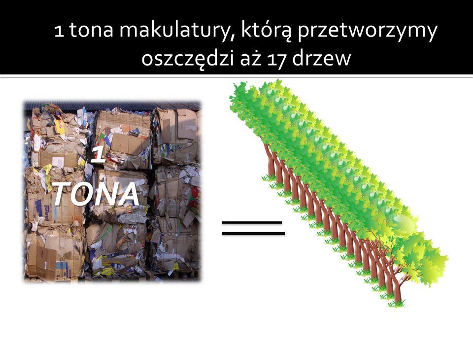 1 tona makulatury, którą przetworzymy oszczędzi aż 17 drzew 1 TONA 1 TONA