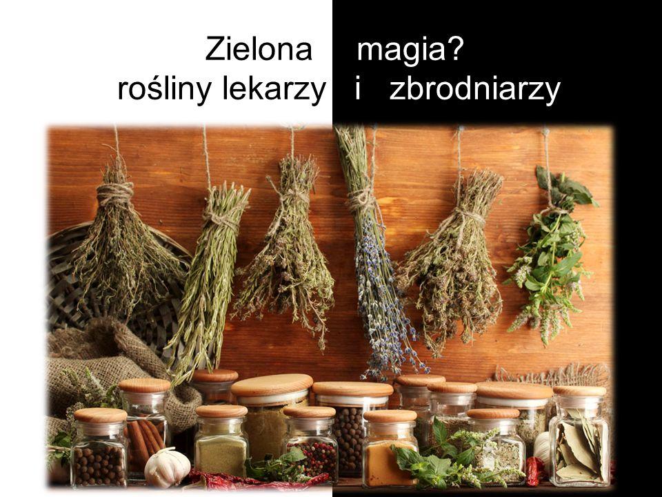 Zielona magia? - rośliny lekarzy i zbrodniarzy