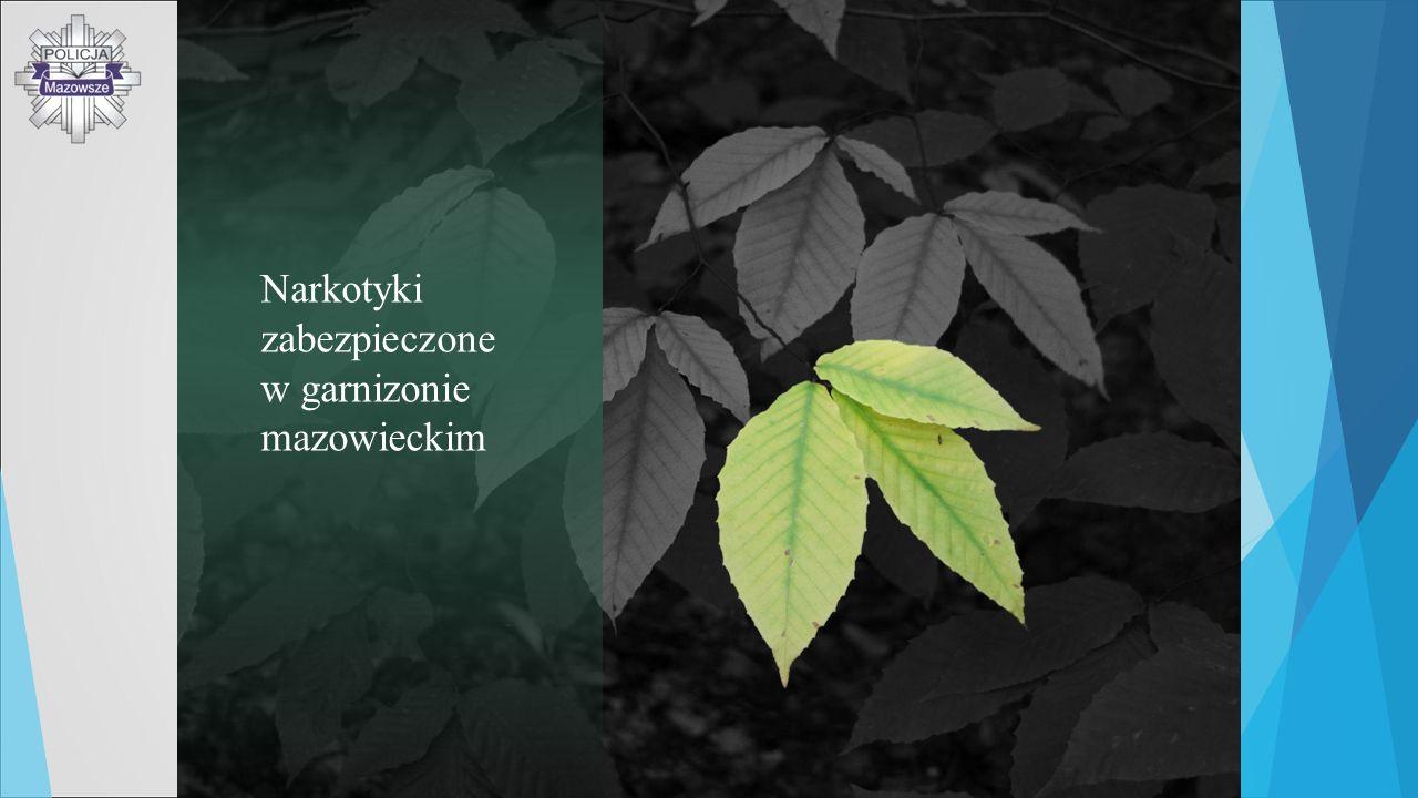 Narkotyki zabezpieczone w garnizonie mazowieckim