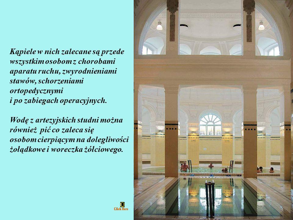 Wody lecznicze Széchenyi Fürdő charakteryzują się wysoką zawartością sodu, wapnia, magnezu i fluoru.
