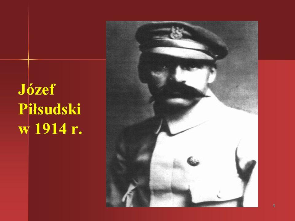 15 Pomnik w Laskach k. Pionek