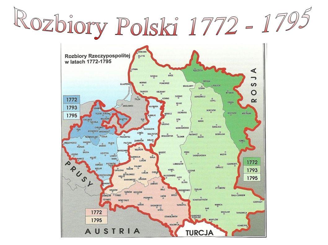 Polacy nie czekali bezczynnie na rozwój wydarzeń.Starali się zyskać wsparcie Napoleona.