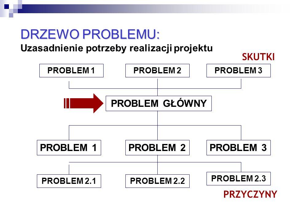 11 PROBLEM GŁÓWNY PROBLEM 1PROBLEM 2PROBLEM 3 PROBLEM 2.1PROBLEM 2.2 PROBLEM 2.3 PROBLEM 1PROBLEM 2 PRZYCZYNY SKUTKI PROBLEM 3 DRZEWO PROBLEMU: DRZEWO