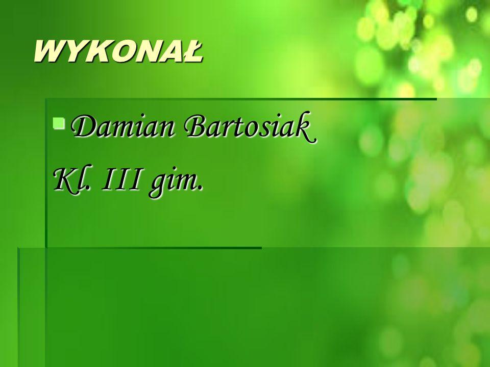 WYKONAŁ  Damian Bartosiak Kl. III gim.