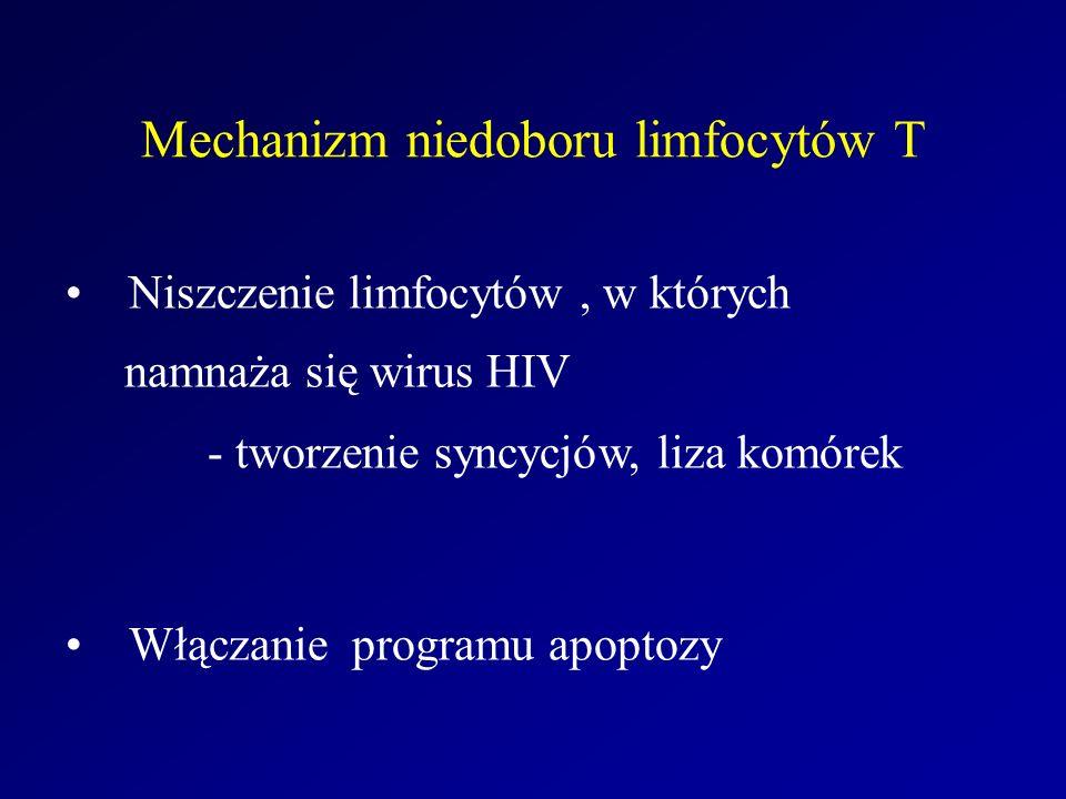 Mechanizm niedoboru limfocytów T Niszczenie limfocytów, w których namnaża się wirus HIV - tworzenie syncycjów, liza komórek Włączanie programu apoptoz