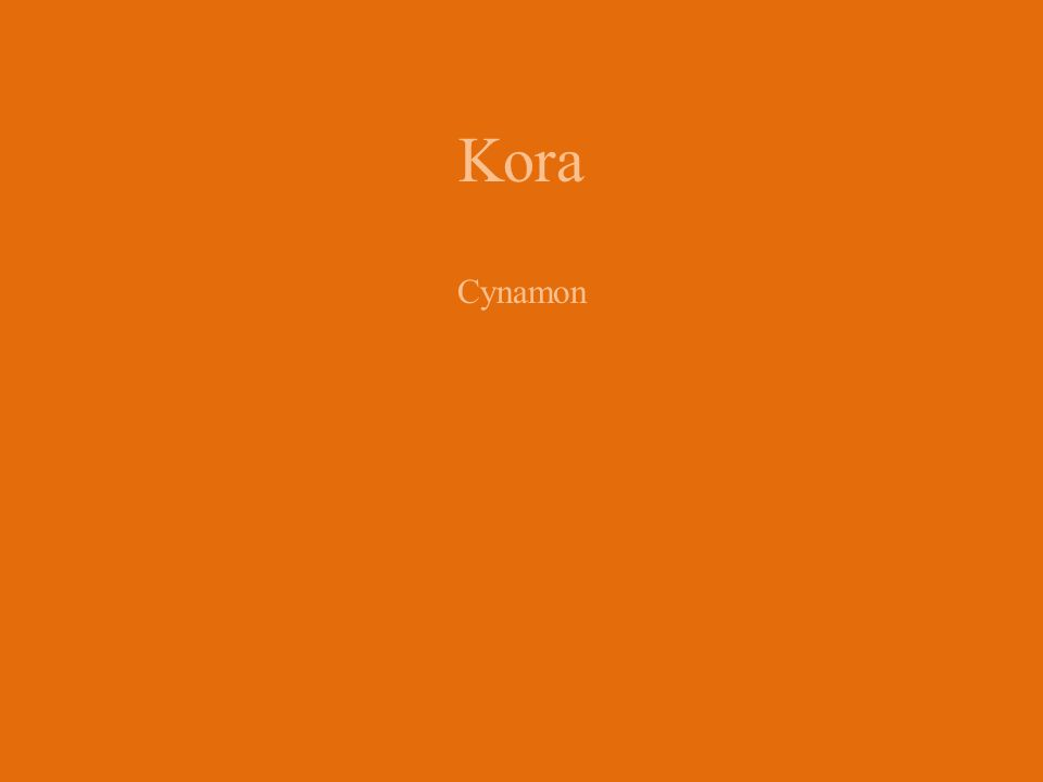 Kora Cynamon