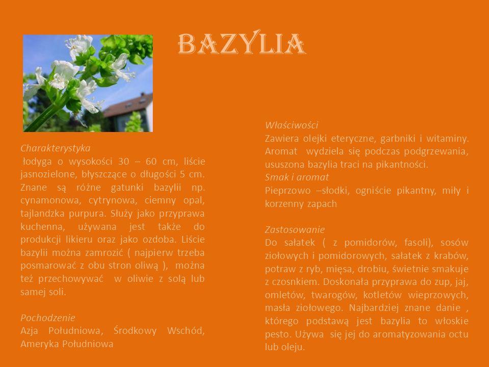 Bazylia Charakterystyka łodyga o wysokości 30 – 60 cm, liście jasnozielone, błyszczące o długości 5 cm. Znane są różne gatunki bazylii np. cynamonowa,