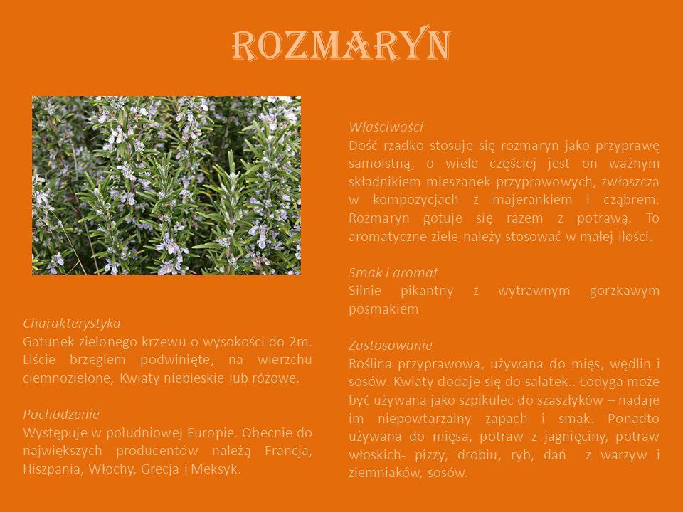ROZMARYN Charakterystyka Gatunek zielonego krzewu o wysokości do 2m. Liście brzegiem podwinięte, na wierzchu ciemnozielone, Kwiaty niebieskie lub różo