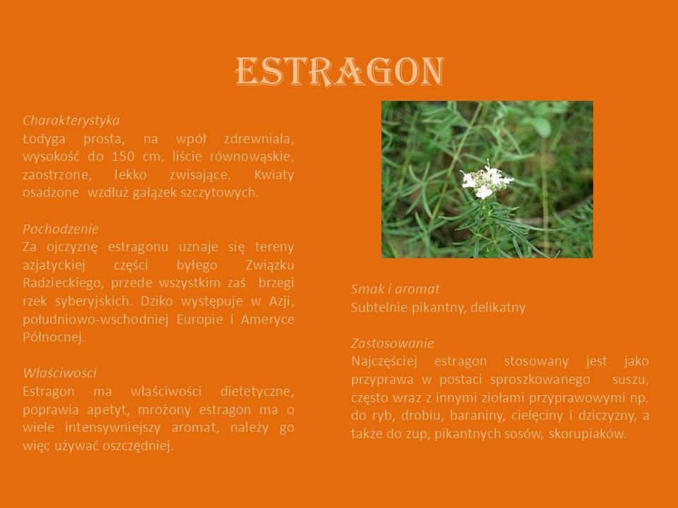 Estragon Charakterystyka Łodyga prosta, na wpół zdrewniała, wysokość do 150 cm, liście równowąskie, zaostrzone, lekko zwisające. Kwiaty osadzone wzdłu