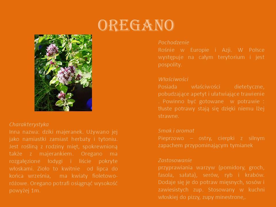 Oregano Charakterystyka Inna nazwa: dziki majeranek. Używano jej jako namiastki zamiast herbaty i tytoniu. Jest rośliną z rodziny mięt, spokrewnioną t