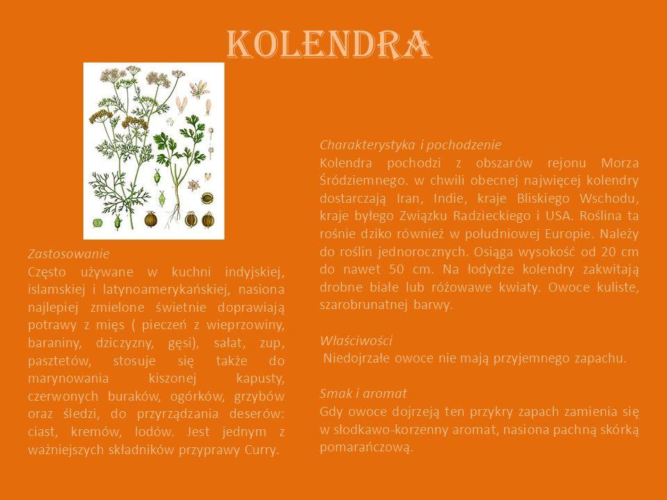 Kolendra Charakterystyka i pochodzenie Kolendra pochodzi z obszarów rejonu Morza Śródziemnego. w chwili obecnej najwięcej kolendry dostarczają Iran, I