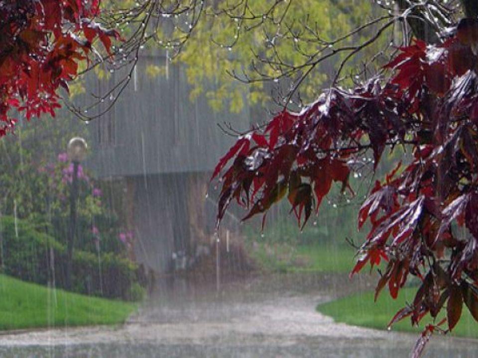 Kwaśne opady; inaczej kwaśne deszcze to opady atmosferyczne, o odczynie kwaśnym; zawierające kwasy wytworzone w reakcji wody z pochłoniętymi z powietr