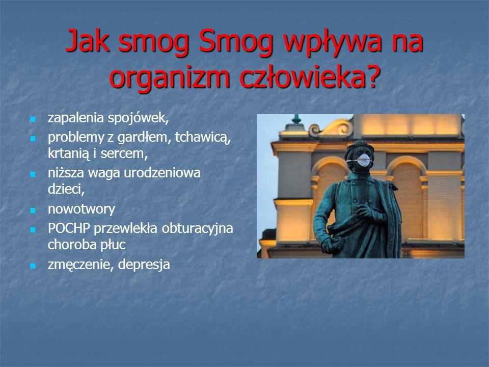 Dlaczego w Krakowie.