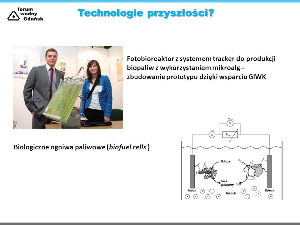 Fotobioreaktor z systemem tracker do produkcji biopaliw z wykorzystaniem mikroalg – zbudowanie prototypu dzięki wsparciu GIWK Biologiczne ogniwa paliw