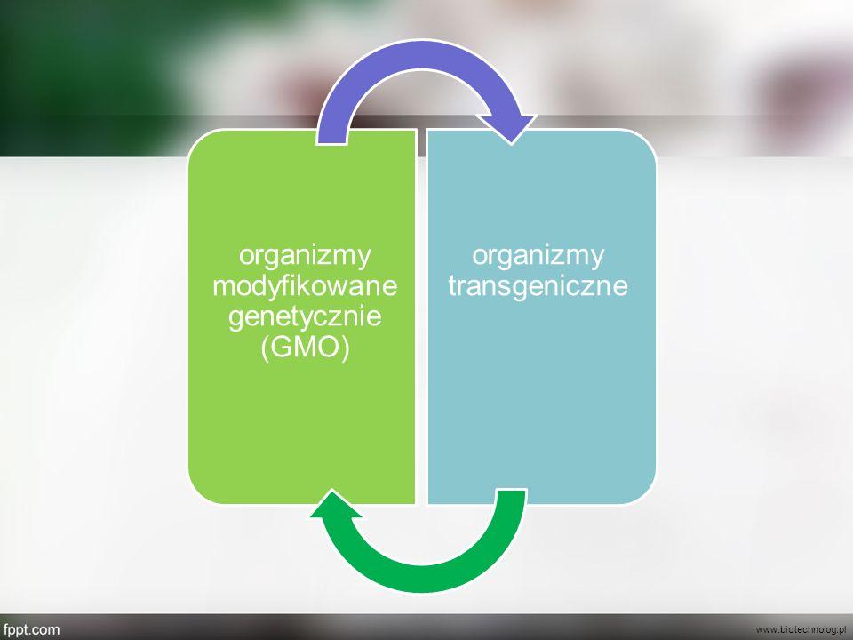 organizmy modyfikowane genetycznie (GMO) organizmy transgeniczne www.biotechnolog.pl