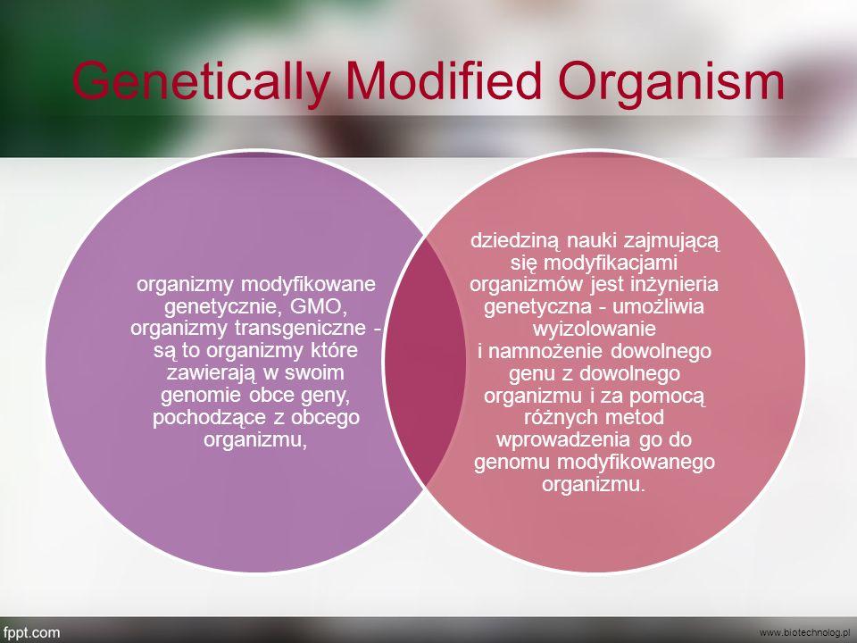 Genetically Modified Organism organizmy modyfikowane genetycznie, GMO, organizmy transgeniczne - są to organizmy które zawierają w swoim genomie obce