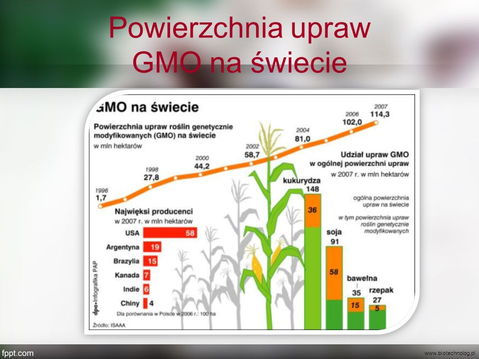 Powierzchnia upraw GMO na świecie www.biotechnolog.pl
