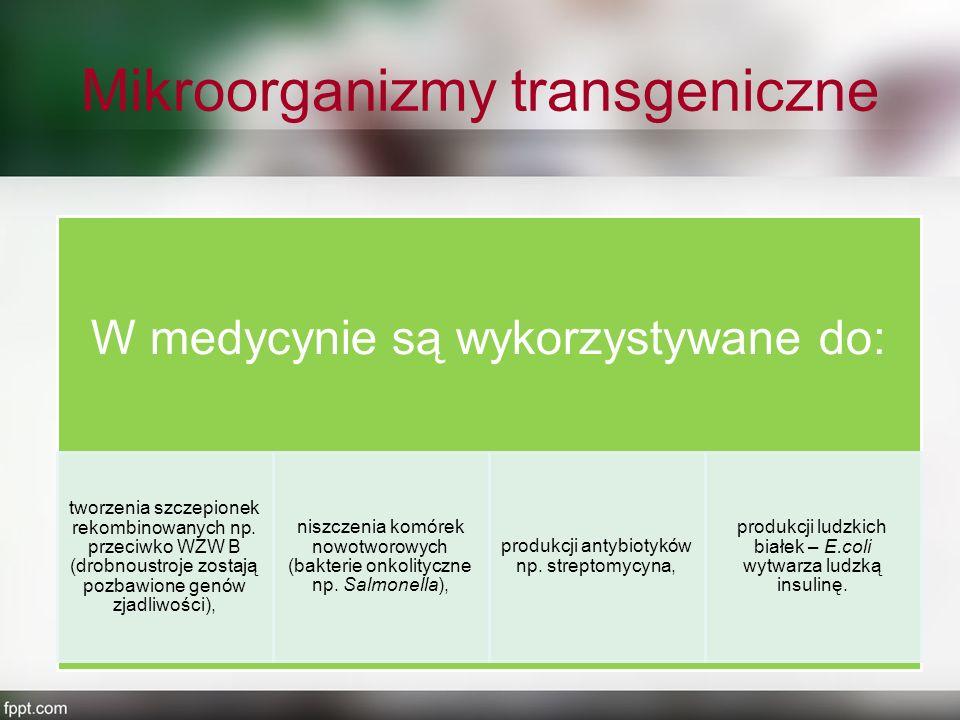 Mikroorganizmy transgeniczne W medycynie są wykorzystywane do: tworzenia szczepionek rekombinowanych np. przeciwko WZW B (drobnoustroje zostają pozbaw