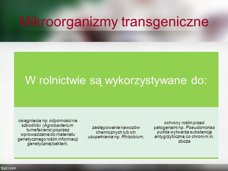 Mikroorganizmy transgeniczne W rolnictwie są wykorzystywane do: osiągnięcia np. odporności na szkodniki (Agrobacterium tumefaciens) poprzez wprowadzan