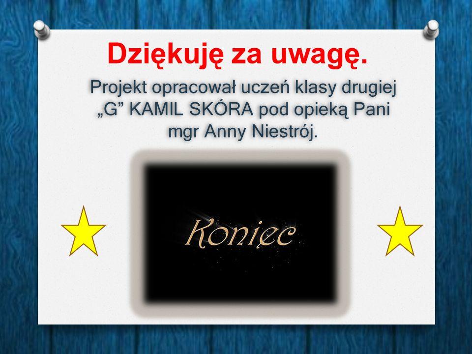 """Dziękuję za uwagę. Projekt opracował uczeń klasy drugiej """"G"""" KAMIL SKÓRA pod opieką Pani mgr Anny Niestrój."""