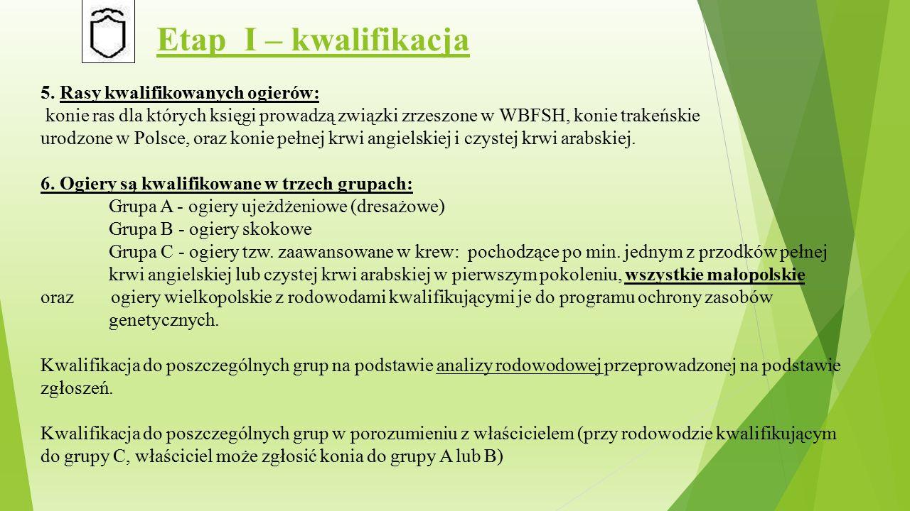 Etap I – kwalifikacja 5.