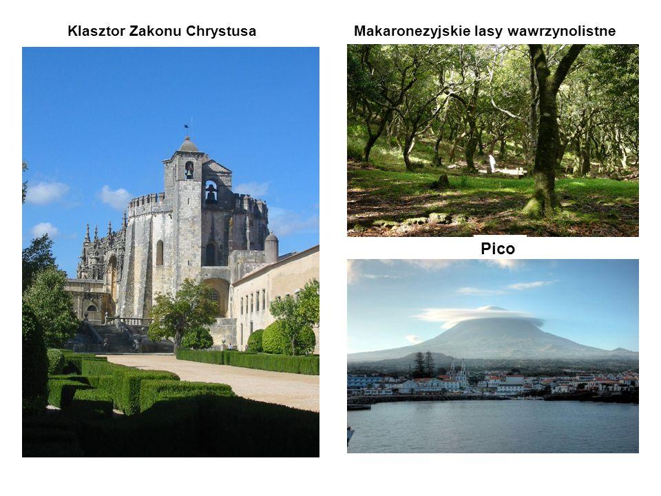 Klasztor Zakonu ChrystusaMakaronezyjskie lasy wawrzynolistne Pico