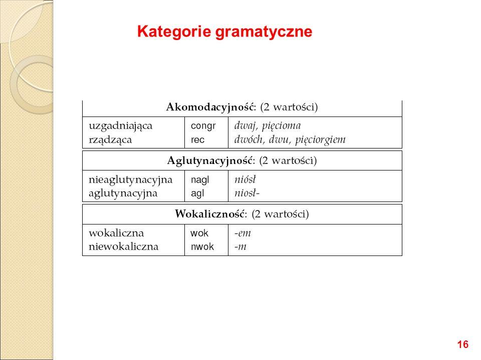 Kategorie gramatyczne 16