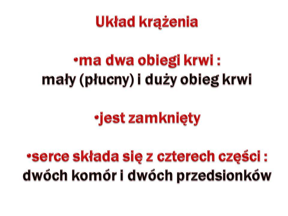 Krew oddaje CO 2 Krew pobiera O 2 Krew oddaje O 2 Krew pobiera CO 2 PK LP LK PP