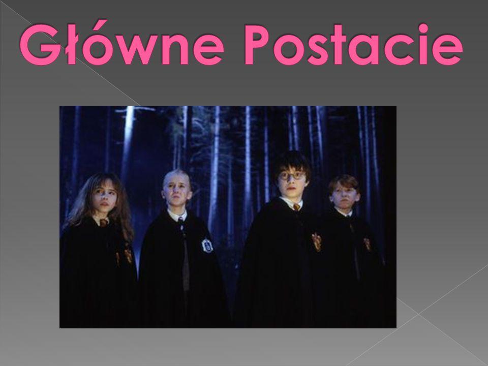 Akcja Harry ego Pottera toczy się w alternatywnej wersji naszej rzeczywistości, w której istnieje niezależne społeczeństwo magów z własnymi szkołami, ministerstwem magii, instytucjami itp.
