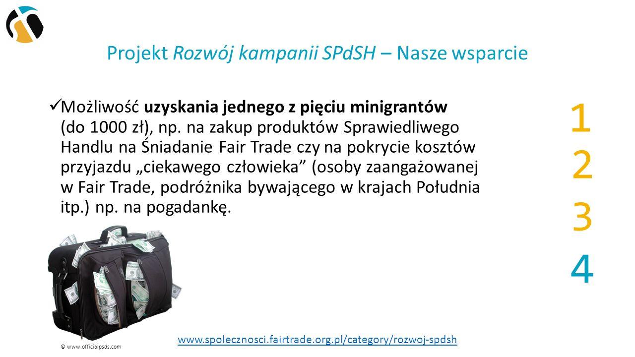Projekt Rozwój kampanii SPdSH – Nasze wsparcie Możliwość uzyskania jednego z pięciu minigrantów (do 1000 zł), np.