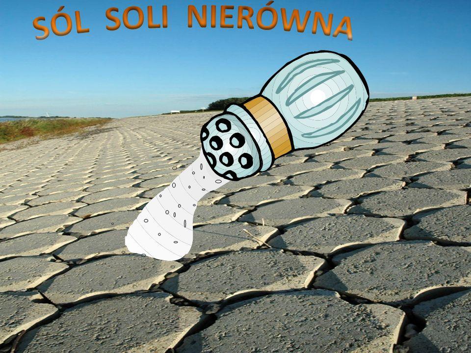 Ca CO 3 Na 2 CO 3 C O 2 Ca O Na 2 O SiO 2 Ca O Na 2 O + +   Ca SiO 3 Ca SiO 3 Na 2 SiO 3 Na 2 SiO 3 krzemianu sodu i krzemianu wapnia te cztery procesy są przeprowadzane na gorąco w piecu hutniczym