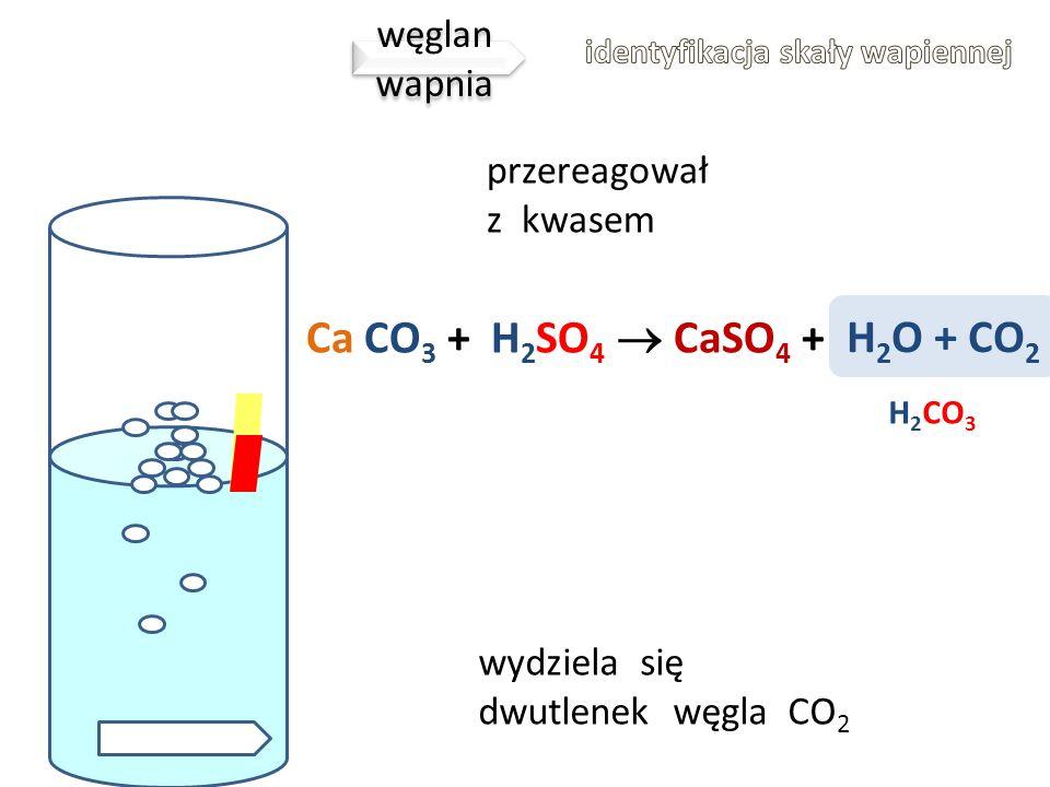 KWASKWAS Ca CO 3 Gdy polejemy bryłkę wapienia kwasem obserwujemy obfite pienienie, ponieważ wydziela się gaz. Węglan wapnia reaguje z kwasem wg reakcj