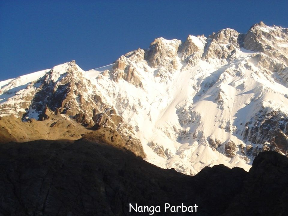 Daktylek Nanga Parbat