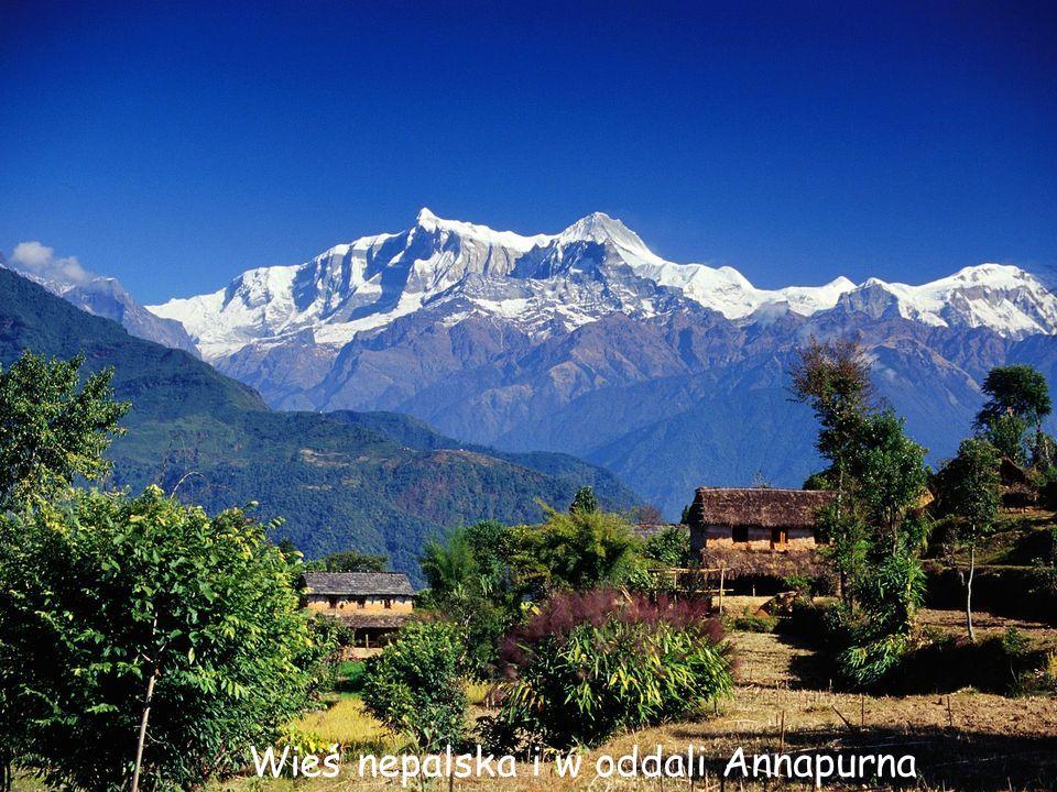 Daktylek Masyw Annapurny od strony Nepalu