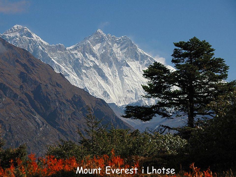 Daktylek Mount Everest