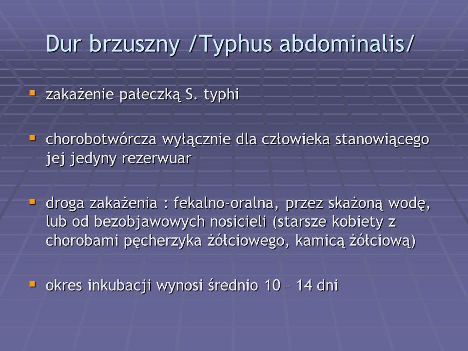 Dur brzuszny /Typhus abdominalis/  zakażenie pałeczką S. typhi  chorobotwórcza wyłącznie dla człowieka stanowiącego jej jedyny rezerwuar  droga zak